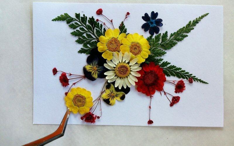 Pressed Flower
